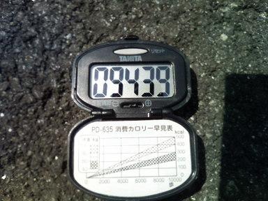 P1000018