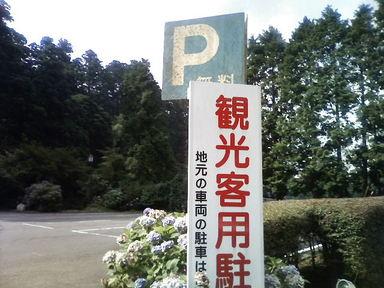 P1000011